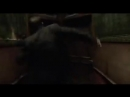 The Shape of Water 2017 Soundtrack_ Trailer Song_Music_Theme Song ( 240 X 426 ).mp4