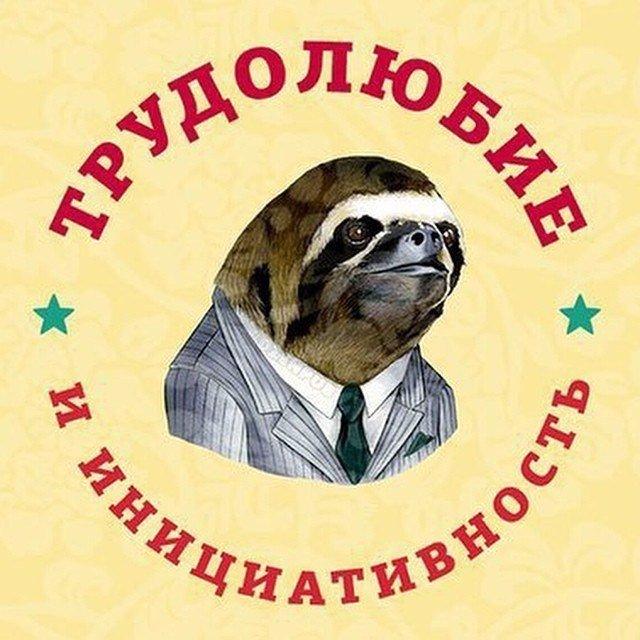 Донат Ратиславский, Санкт-Петербург - фото №4