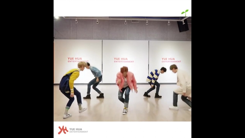 Yuehua 위에화 연습생 - Just Right 딱 좋아 Dance Practice (YH_NEXT ver.)