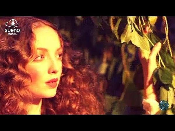 Sasha Van Laur - Solitude (Original Mix) [Sueno Digital]