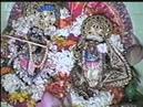 Gopal Jiu temple 11 03 95 Gadai Giri