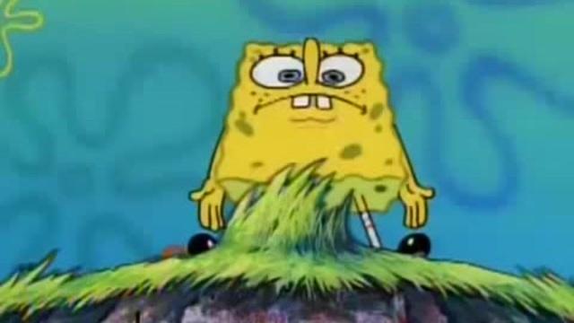 Sponge bob shipuden