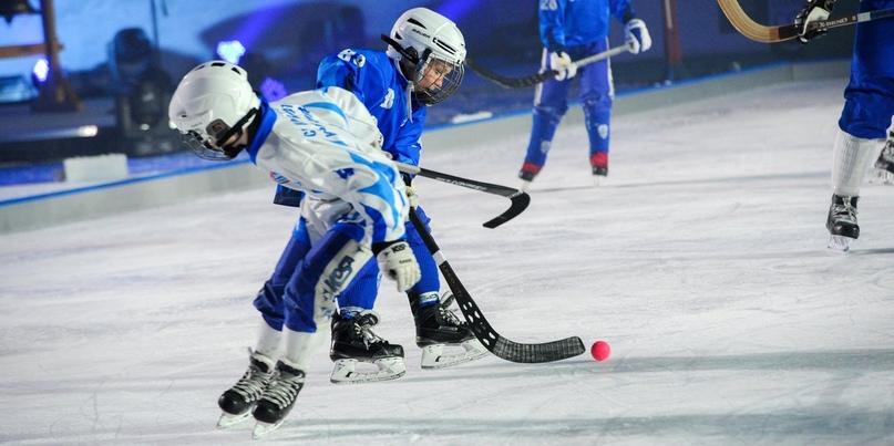 Где поиграть в хоккей в парках Москвы. Подождите загрузки картинки!