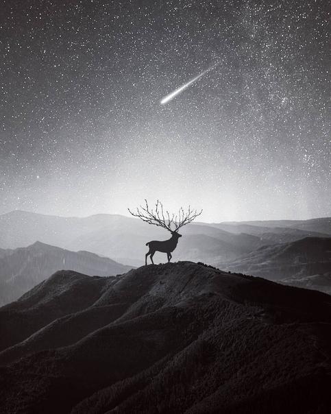 Звёздное небо и космос в картинках - Страница 38 K8XwXjvs4a0