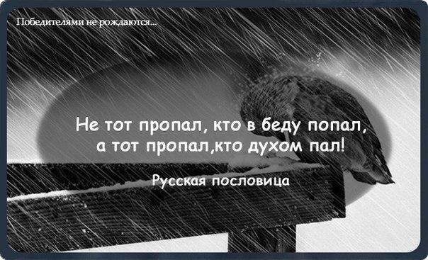 http://cs405429.vk.me/v405429485/9212/MzB7TZ97A2c.jpg