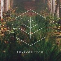 Логотип Revival Tree