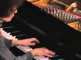 Maria Joao Pires plays Chopin Fantasia op.49