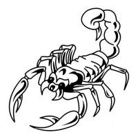 """Предпросмотр схемы вышивки  """"Скорпион """"."""