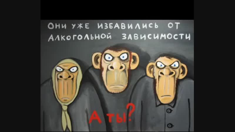 'Паралельная Вселенная' художника карикатуриста Василия Ложкина mp4
