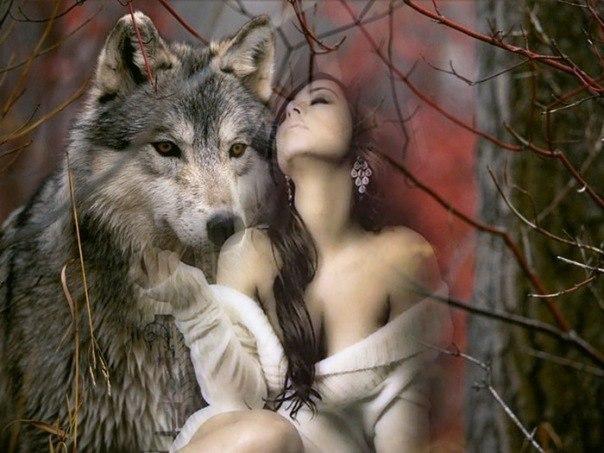 Одинокая Волчица | ВКонтакте.