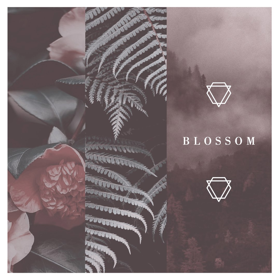 Blossom - Weight Of The World [EP] (2016)