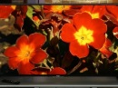 Sony KDL-W850B series: Big TV with a picture quality (w)edge