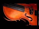 How Do I Stop Loving You Engelbert Humperdinck violine cover