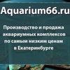 Аквариум66