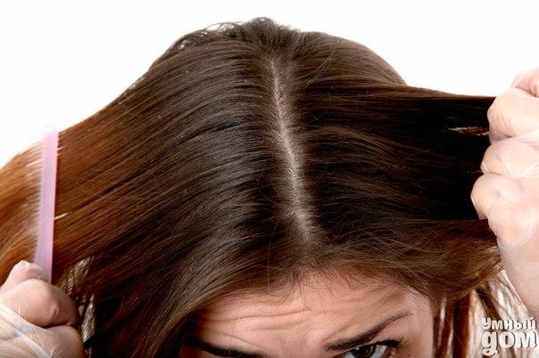 Может ли соль помочь избавиться от перхоти??? Высокая концентрация соли очень губительна для микроорганизмов, в том числе и для грибка, который приводит к перхоти. Соль способствует отшелушиванию мертвых клеток, очищает нашу кожу от загрязнений, активизирует кровообращение, улучшает питание корней у волос. Рекомендации применения соли: -слабый рост волос; -наличие перхоти; -излишняя жирность волос; -повышенное выпадение волос; -предупреждение появления седых волос; Самый простой способ…