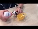 Интерактивная игрушка - Домашний питомец. Накорми питомца молоком.