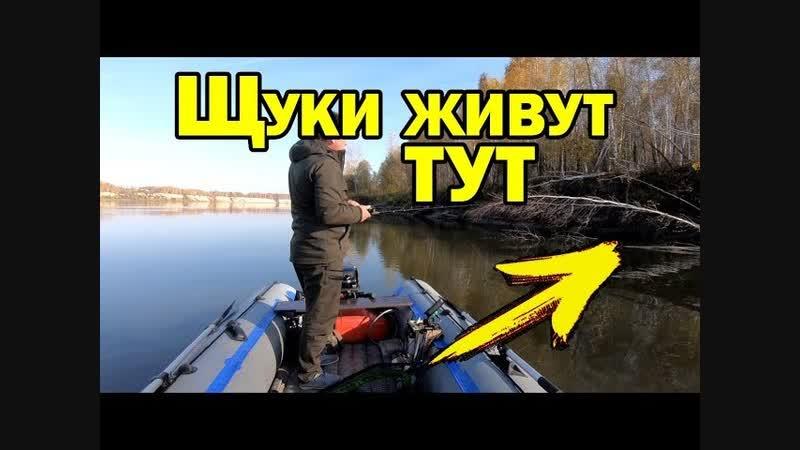 Где искать щуку осенью? Места стоянок щуки. Рыбалка на спиннинг / AikoLand TV ult bcrfnm oere jctym.? vtcnf cnjzyjr oerb. hs,fkr