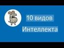 10 видов интеллекта Бэби клуб