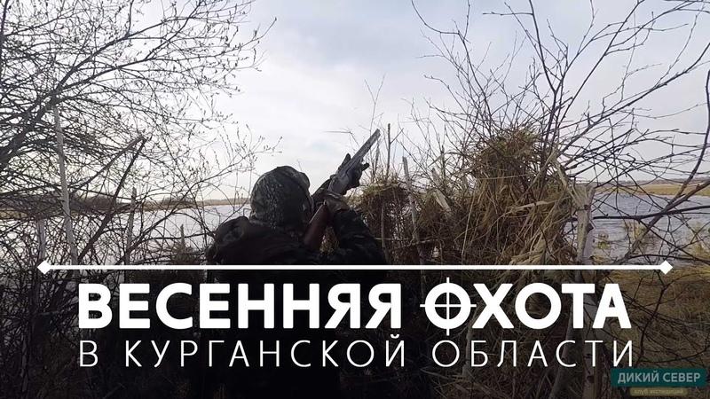 Охота на тетерева Удачно открыли сезон 2019 в Курганской области