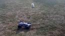 JLB Racing Cheetah 21101 Extreme vs Dog