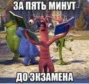 Александр Молчанович фото #43