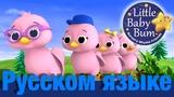 Пять маленьких птичек детские песни LittleBabyBum