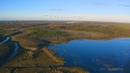 Гуси гуменники над Березинским заповедником осенью