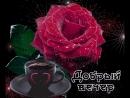 Doc396992784_466426470.mp4