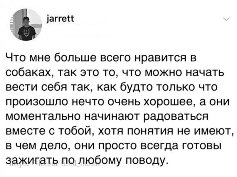 Илья Шереметьев |