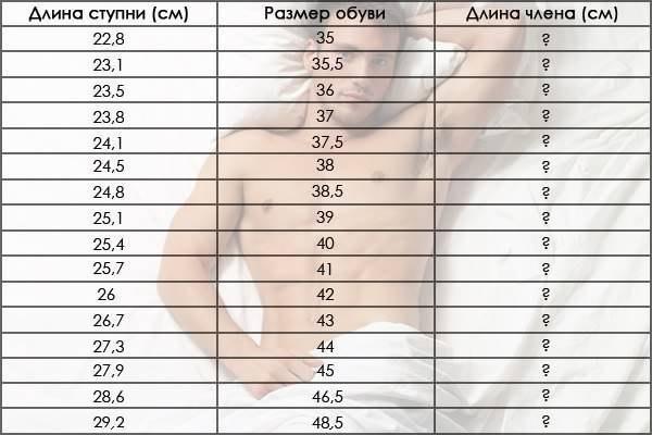 мужской половой член размеры Покровск
