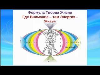 Базовая формула Творца Своей Жизни. Альсей Вольный