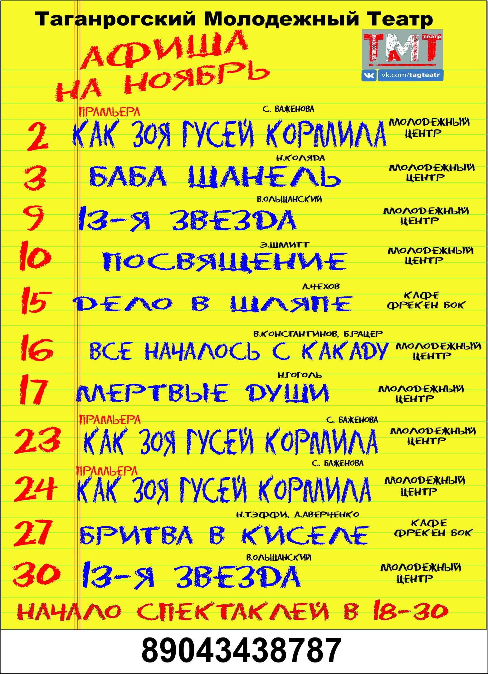 Афиша Ноябрь. Молодежный театр Нонны Малыгиной