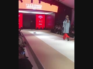 Кошка вышла на подиум на показе мод