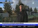 Житель Павлодарской области собрал коллекцию уникальных ретромобилей