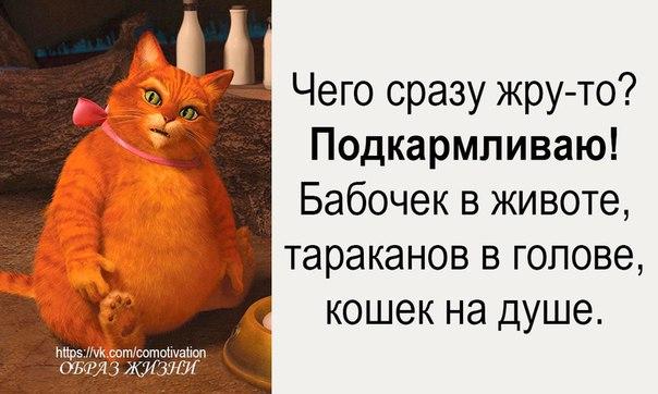 Фото №456263848 со страницы Тани Рыженковой