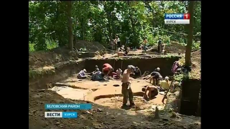 Гочевские раскопки преподносят археологам новые находки