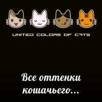 Все оттенки кошачьего