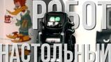 Самый классный настольный робот.