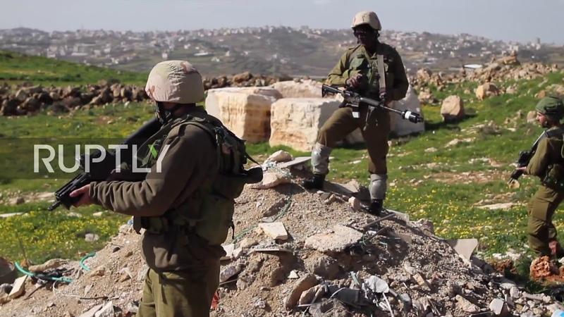 Палестина: Израильские слезоточивый газ опускается на деревья в окрестностях Вифлеема