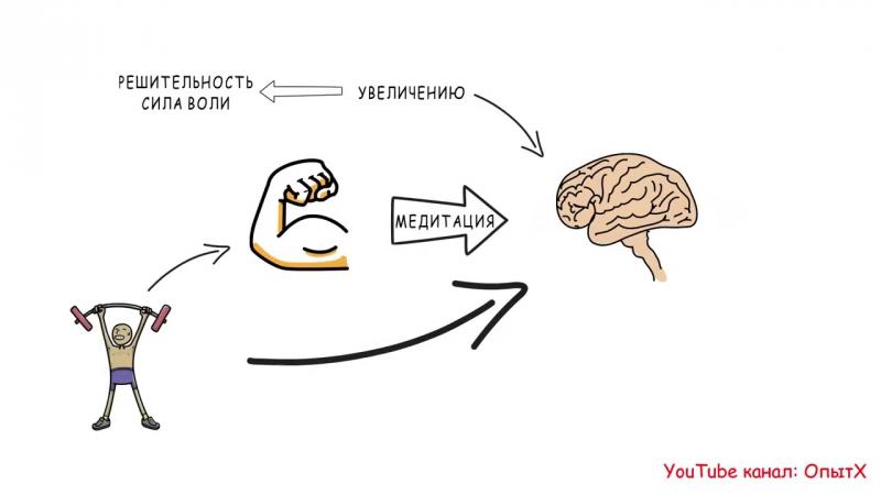 Сила Воли. Как развить и укрепить (5 способов) - Келли Макгонигал - Обзор книги » Freewka.com - Смотреть онлайн в хорощем качестве