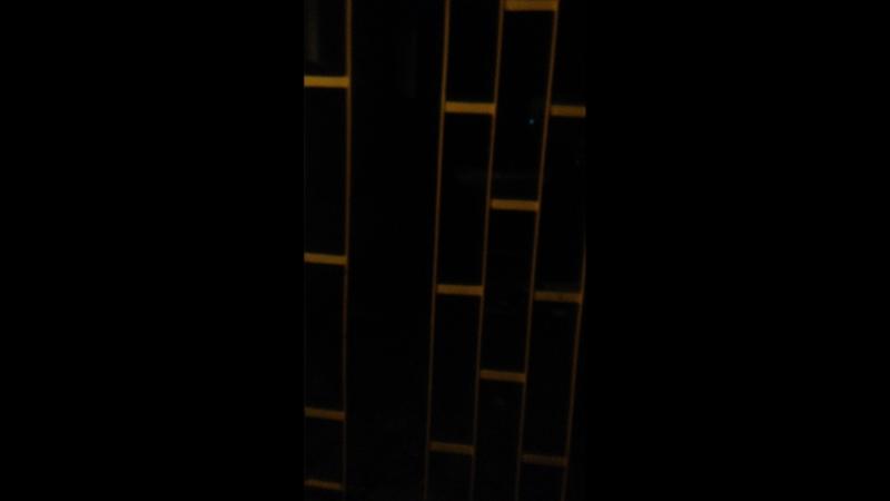 Виолетта Зонова — Live