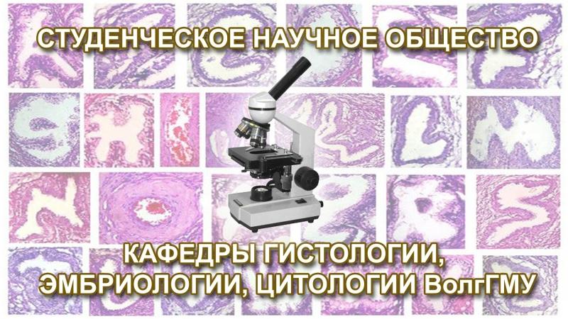 СНО кафедры гистологии, эмбриологии, цитологии ВолгГМУ 29.09.18 (5:11)