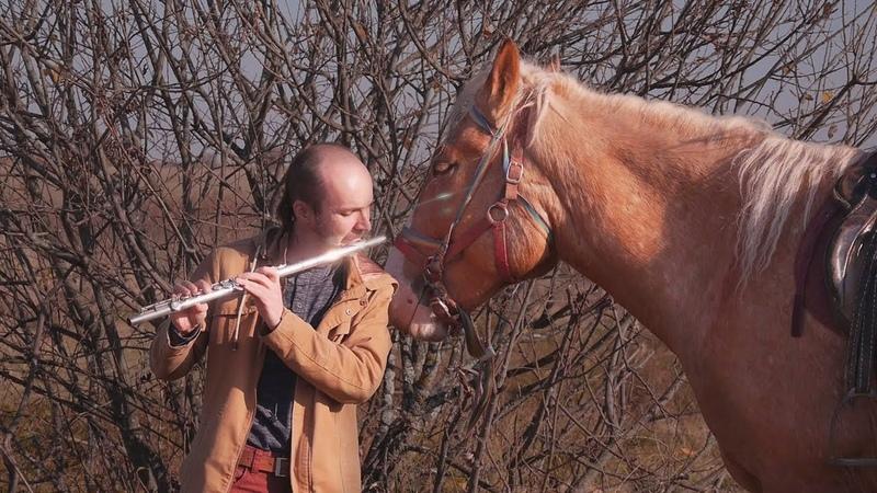 Ивков Сергей Ходят кони над рекою