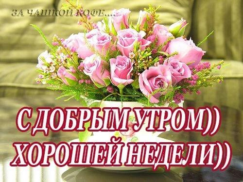 http://cs616631.vk.me/v616631044/1bb92/-WlcUUpPyHw.jpg