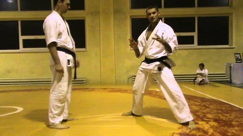 Бушинкан Дзю Дзюцу - 5я техника из ката бросков через бедро. (Bushinkan Jiu Jitsu)
