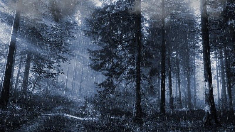 Regen Sound 30 Minuten für Entspannung, Stressabbau, Schlaf