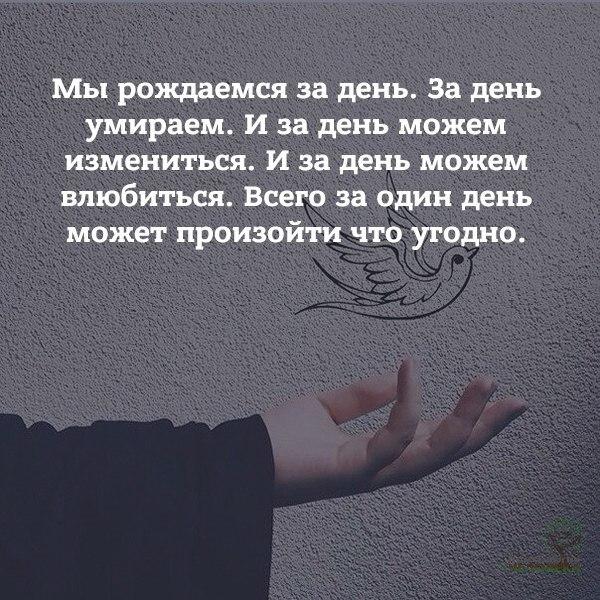 Фото №456268713 со страницы Анастасии Пеструиловой