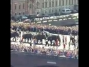 Пиздец... - По Невскому слонов водили... - День города в культурной столице. - - Как кто в