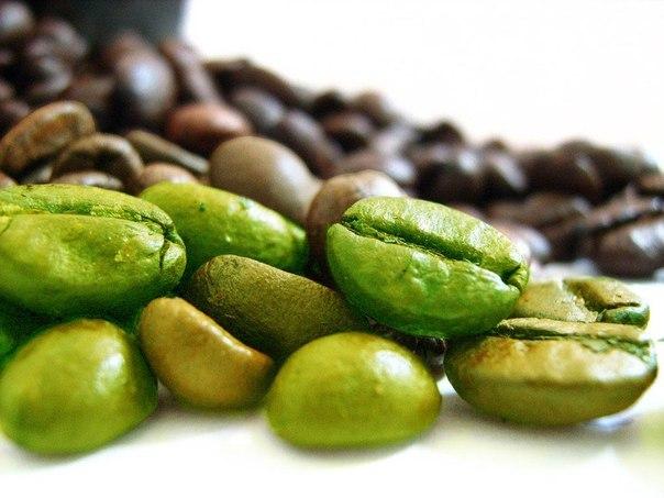 Хотите похудеть – пейте зеленый кофе
