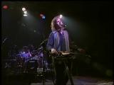 Jeff Healey - Angel Yer Blues - In Concert - Extrasplat 1995